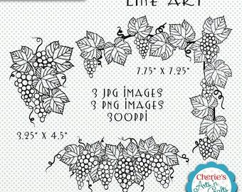 Grapevines Line Art, JPG Files, Grapevines PNG Line Art, Digital Downloads, Digital Scrapbooking Elements, Coloring Pages, Grapevines Art