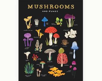 Mushroom & Fungi Art Print