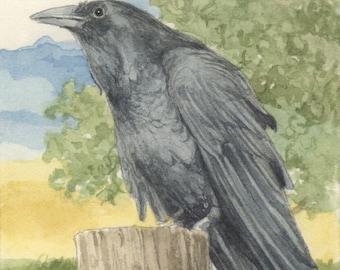 Raven 5x7 Signed Print