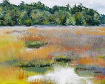 Landscape, Savannah Marsh 10x22