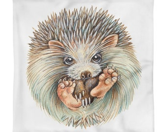 HEDGEHOGball    -----     Square Pillow CASE  only   ----- -  ship from USA