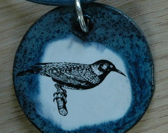 Orginal handicraft: pendant with a starling. jewellery charm science biology vintage