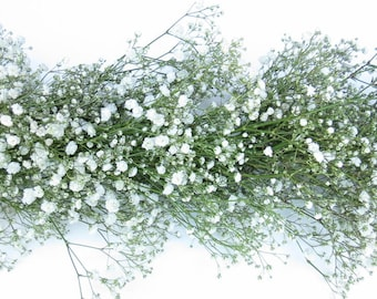 Baby's Breath Fresh Garland