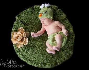 Newborn Lily Pad Photography Prop