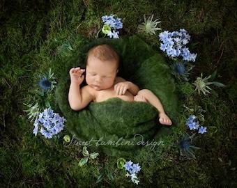 Newborn Digital Backdrop - Finley nest, instant download