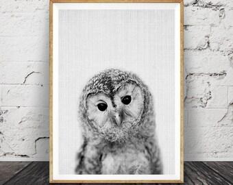 Owl Print, Woodlands Nursery Wall Art, Printable Poster, Black White and Grey, Animal Photo, Gender Neutral Kids Room, Digital Download