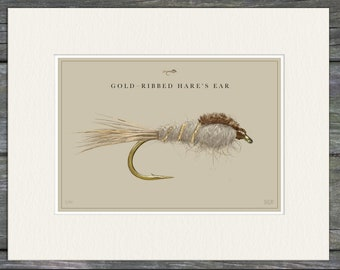 Gold-Ribbed Hare's Ear Fine Art Print