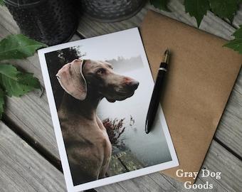 Weimaraner Card, Dog Greeting Card, Dog Photography, Fog Dog