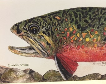 Collection of beautiful area trout printed note cards