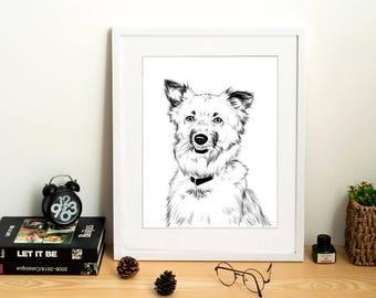Border Collie Dog Portrait Custom, Custom Pet Portrait, Custom Black White Drawing, Dog Drawing Sketch, Dog Portrait Illustration