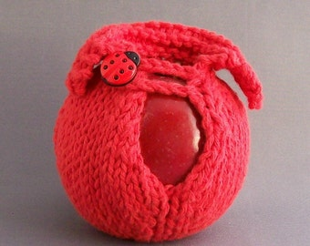 Cozy Red Apple Cover Jacket Get Lucky 18mm Ladybug Button Handknit Red Back to School Lunchbox Accessory Gift under 20