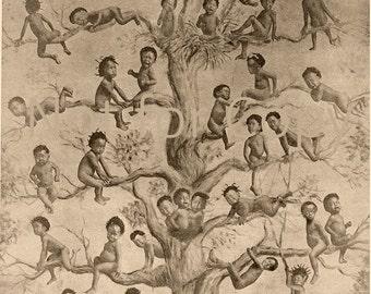 BLACK BIRDS William Bell  Black babies in a tree Black American Art