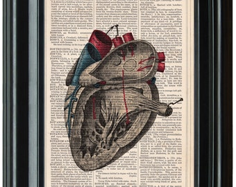 Anatomy Illustration Human Heart dictionary art print book page antique vintage dictionary print wall Medical