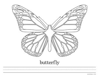 Coloring Sheet - Butterfly - Instant Download PDF