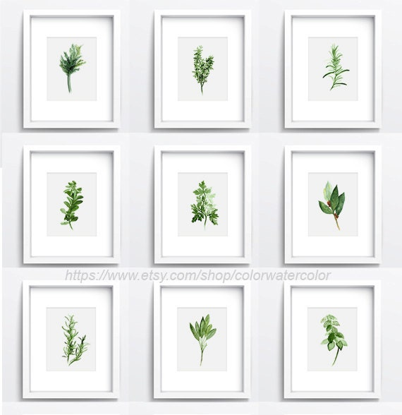 Kitchen Art Herbs: Set Of 9 Herbs And Spices Kitchen Decor Herb Chart