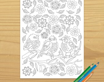 Bird Coloring Page, Robin Coloring Page, Songbird Coloring Page, Adult Coloring Book, Nature Coloring Page, Digital Download