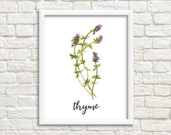 Watercolor Thyme Herb Printable Wall Art Botanical Herb Print Herb Printable Thyme Wall Art Thyme Printable Kitchen Decor Kitchen Wall Art