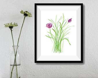 Chives art print, chives watercolor print, botanical herb print, kitchen art, green, purple plant, wall decor, cottage chic
