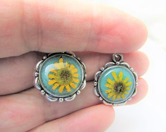Mini Sunflowers on Teal  Earrings, Real Flowers,  Pressed Flower Jewelry,  Brass,  Resin (3104)