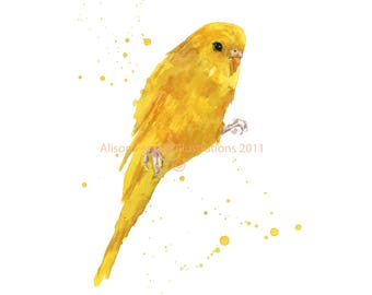 Yellow PARAKEET Watercolor Print, bird lover gift