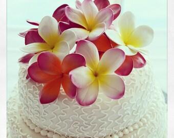 1/2 Price Sale single Plumeria Cake flowers