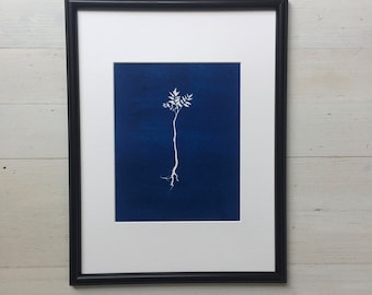 Sumac Sapling, Blue Botanical art, sumac, sumac print, blue art, blue print, blue botanical, Cyanotype print, cyanotype art, Plant print