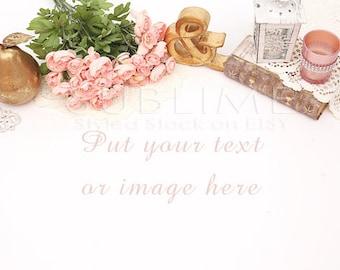 Styled Stock Photography / Styled Desktop / Product Styling / Digital Background / Styled Photography / JPEG Digital Image / StockStyle-392