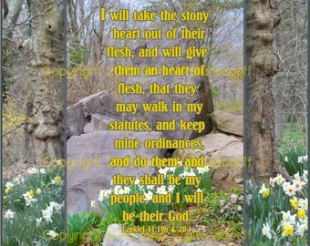 New Heart, Ezekiel 11-19, scripture collage Gods word gray yellow woodland, boulders, fine art wall decor Fathers Day Gift Gina Waltersdorff