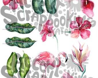 Flamant rose - Images à découper