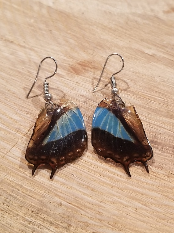 Real Butterfly Wing Earrings Preserved In Resin Nature Women Jewelry Boho Chic Natural Earth Fashion Art (E222)