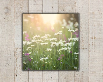 Daisy Flowers, Large Canvas Wall Art, Country Nature Photography, Daisies Picture, Girls Room Wall Decor, Sweet Peas, Pink & Green, Canvas