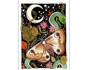 A4 Art Print   Moth Watercolour Illustration