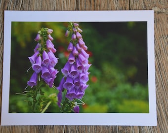 Note card & envelope: Giverny1