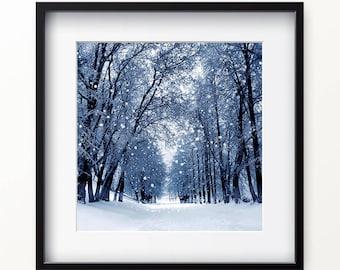 Winter Trees in Snow Digital Print, City Trees Snow Wall Art, Digital Print, Printable Wall Art, Instant Download Printable Art Poster