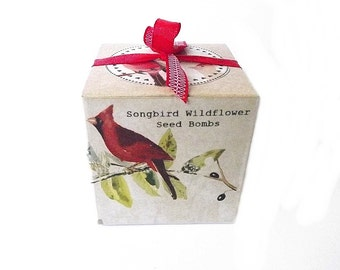 Mom Gift, Songbird Wildflower Seed Bombs, Gift Boxed, Bird lover Gift, Gardener Gift, Wildflower Seeds, Birds Butterflies, Gift under 25