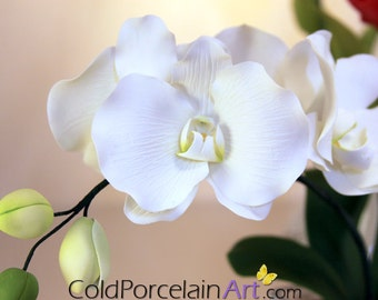 White Phalaenopsis Orchid Centerpiece - Cold Porcelain Art - Made to Order