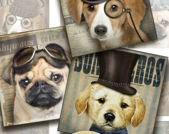 dog is getting all dressed 12 square Images2x2 inches collage sheet