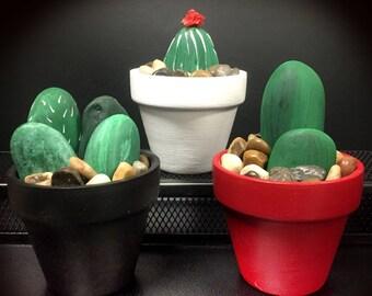Cactus Pot Kit