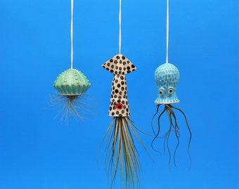 Air Plant, Small Hanging Planter , Octopus Garden Collection,  Jellyfish, Squid, Octopus,Whimsical Gift