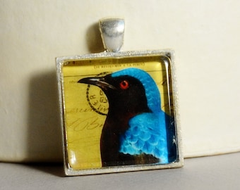 5 Dollar Deal - 5 and Under - Bird Pendant - Vintage Bird Collage Pendant by Happy Shack Designs