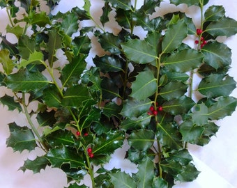 Holly stems with berries,  fall decor, flower arranging, swag making, bridal bouquets, mantle decorations, wreath making and holiday crafts