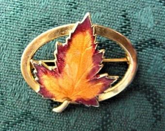 Maple Leaf Pin Brooch  --  Vintage Costume Jewelry