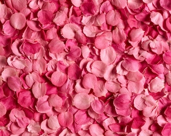 Pink petal Backdrop - flower floor, wedding, girl, birthday - Printed Fabric Photography Background W1260