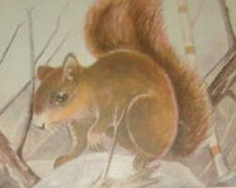 SALE Vintage Animal Postcard (Fox Squirrel)