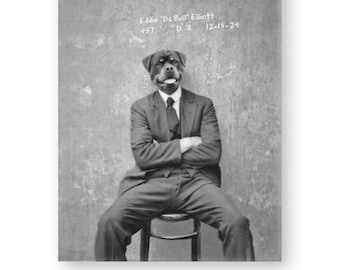 "Dog Art Print Rottweiler Animals In Clothes Black and White Photography Funny Wall Art Vintage Mugshot (2 sizes) ""Eddie 'Da Bull' Elliott"