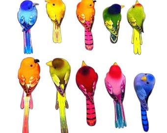 Set of 12 birds multicoloured Magnet Decoration