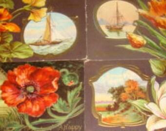 4 Vintage Sceanic/Floral Postcards