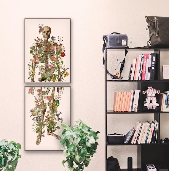 Full Human Skeleton in two parts. Anatomical decoration, Anatomical art, Anatomy art, Wall art, Wall decor, Gift for doctor, Skull SKA149WA3