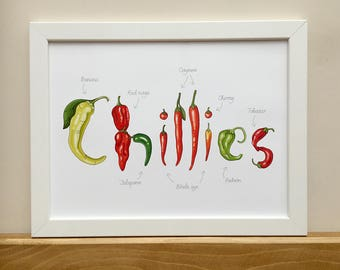 Chillies, lettered and illustrated print for framing, kitchen decor, A3, 30x40cm or 12x16inch.