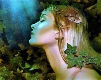 Evening Star Perfume Oil 1/2 oz.  Fantasy Perfume, Elf Perfume, Elven Perfume, Romantic Perfume, Fantasy Fragrance, Perfume Gift For Her